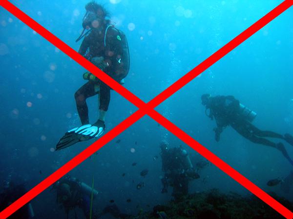 buvar-szabalyok-manta-tisztito-allomas-merules-nem-szabad